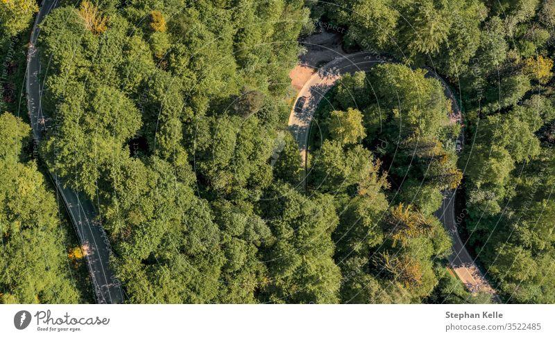 Kurvige Straße durch einen grünen Wald von oben mit einer Drohne fotografiert. straße wald aerial drohne Luftaufnahme Vogelperspektive Natur Baum Sommer Tag