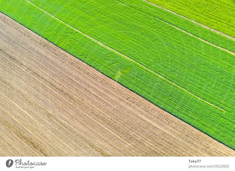 eine Agrarlandschaftstextur von oben landwirtschaftlich Landwirtschaftlicher Weg Traktor Traktorpfad Feldhintergrund Wiesen-Hintergrund Air Luftaufnahme Textur