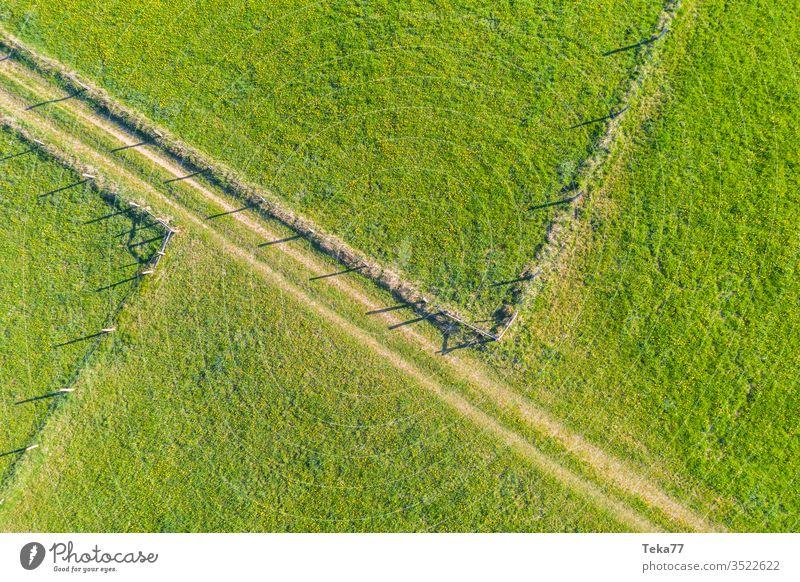 Quellfelder und Zäune von oben Felder von oben Zaun Tierzäune landwirtschaftlich Landwirtschaftlicher Weg Traktor Traktorpfad Feldhintergrund Wiesen-Hintergrund