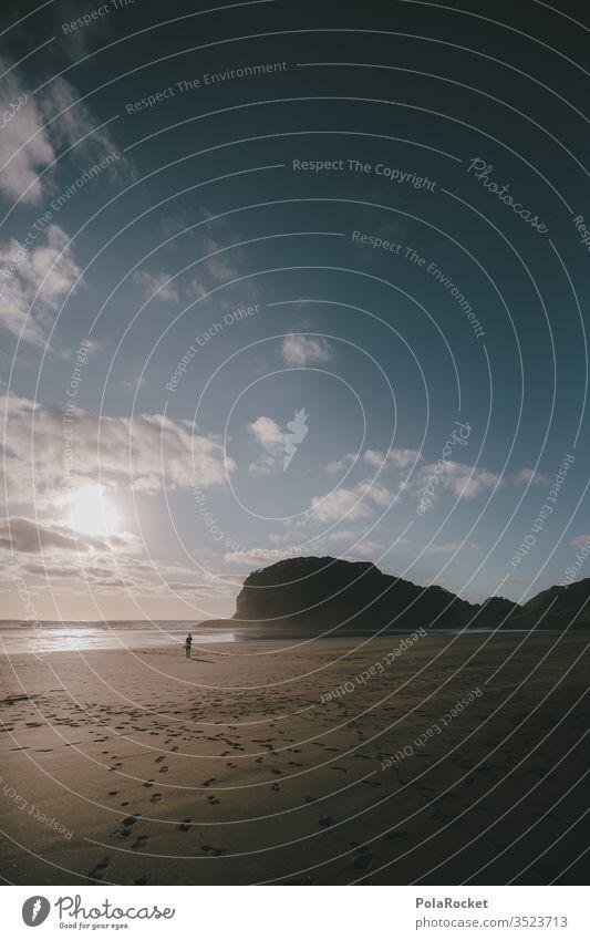 #As# Lauf! Neuseeland Neuseeland Landschaft Küste Strand Strandspaziergang Strandleben Strandgut Berge u. Gebirge Küstenstreifen Küstenwanderung Natur