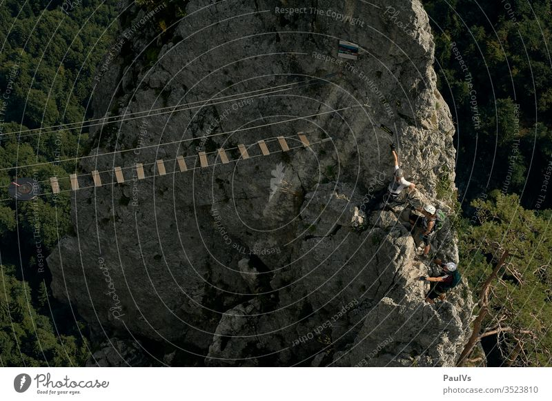 Hängebrücke in den Bergen / Klettersteig Drachenwand Mondsee Alpen Klettern Alpinismus Abenteuer Wandern Bergsteigen Wald Baum Fels Gebirge Sport Outdoor