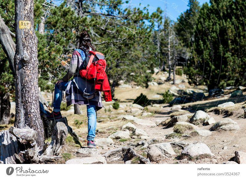Rückansicht einer Rucksacktouristin, die auf einem Waldweg steht und wegschaut Wanderer Kontemplation Stehen Tourismus Backpacker Freiheit Person Reisender