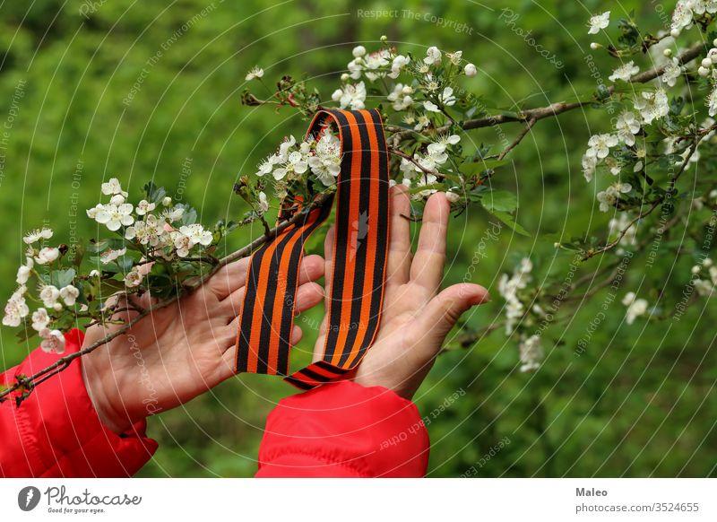 Tag des Sieges. Arrangement von George-Band und blühendem Zweig Grafiken ewig george Mai Nelke schwarz Ast Glückwünsche Mut Blume Ruhm Held Feiertag