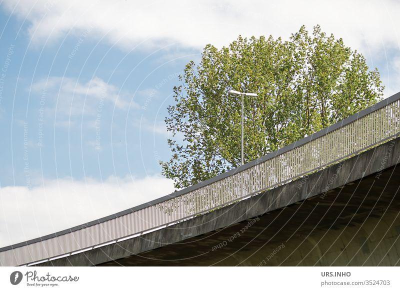Kurve einer Brückenauffahrt mit Straßenlaterne und Baumkrone vor blauem Himmel Brückengeländer bewölkt blauer Himmel Auußenaufnahme menschenleer Wege & Pfade