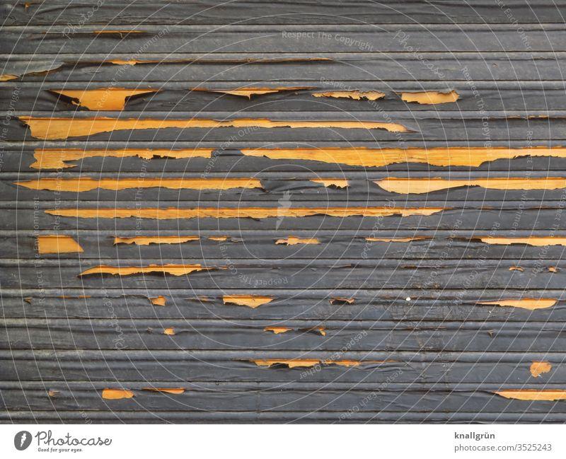 Alter dunkler Rolladen aus Holz, an dem die Farbe abblättert und helles Holz sichtbar wird Sichtschutz abblättern alt verwittert Farbschicht Strukturen & Formen