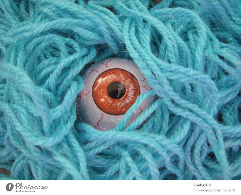 Ein braunes Glasauge starrt zwischen blauen Wollfäden hindurch Auge Wolle Blick beobachten starren Spähen gucken braunes Auge unheimlich gruselig Versteck