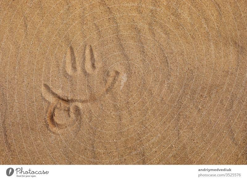 Smiley mit dem Finger am Sandstrand gemacht - Zunge raus. selektiver Fokus Hintergrund ausspannen Textur Symbol sonnig Sonne Sommer Smiley-Symbol Smiley-Gesicht