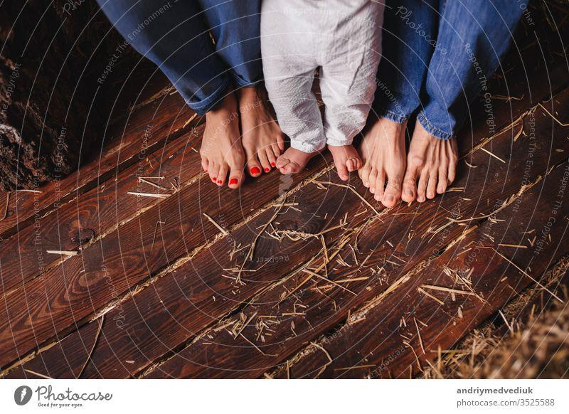 Nackte Füße von Familienmitgliedern - Mutter, Vater und Kind. Holzboden Baby schön Junge Pflege Kaukasier Kindheit Nahaufnahme Konzept niedlich Fuß Stock Glück
