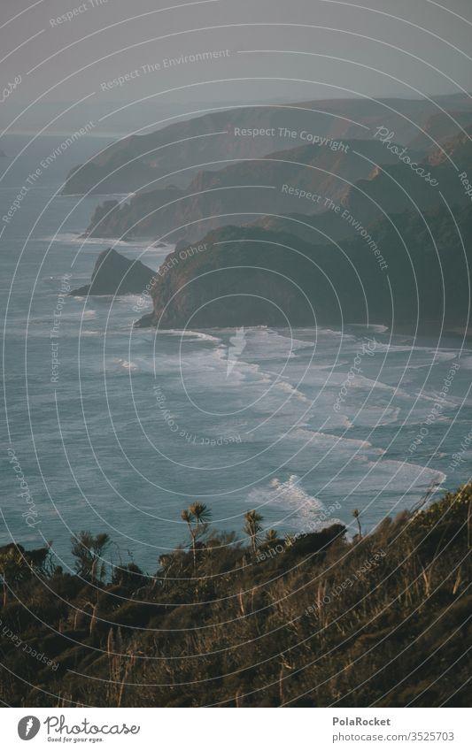 #As# Küste Neuseeland Piha Steilküste Wellen swell Meer Natur Wasser Außenaufnahme Farbfoto Landschaft Strand Menschenleer Felsen Ferien & Urlaub & Reisen