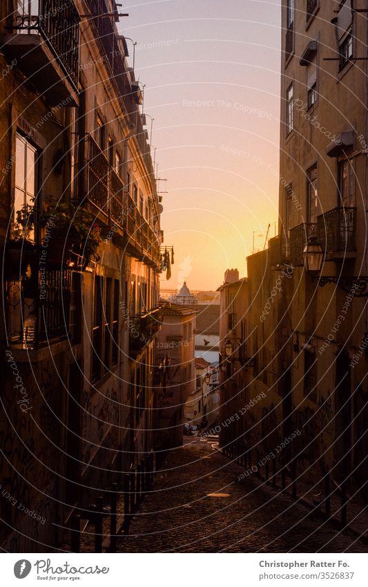Sonnenuntergang in den Gassen Lissabons Reise Tourismus Ferien & Urlaub & Reisen Außenaufnahme Gelassenheit Ausflugsziel Reisefotografie Süden Farbfoto