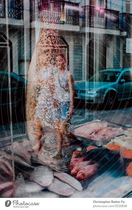 Ein großer Fisch in einem Lissabonner Restaurant Reise Tourismus Ferien & Urlaub & Reisen Außenaufnahme Gelassenheit Ausflugsziel Reisefotografie Süden Farbfoto