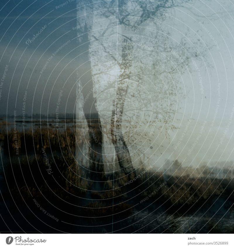 analoges Bild einer herbstlichen Landschaft Doppelbelichtung Holga Dia Lomografie Scan Experiment Cross Processing cross Himmel Farbfoto Wolken düster