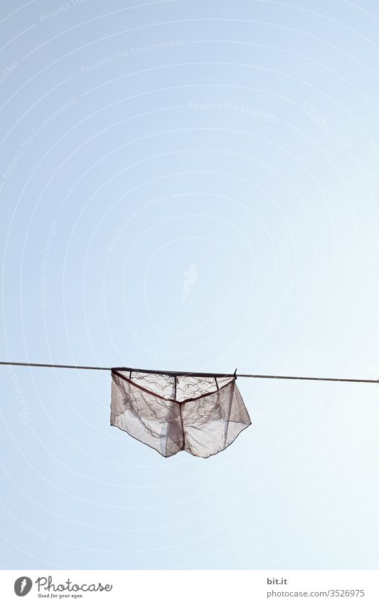 Reizend hängt sie da, dem blauen Himmel heut ganz nah. Wäsche reizvoll Reizwäsche Wäscheleine trocknen Wäsche waschen Waschtag Haushalt Sauberkeit