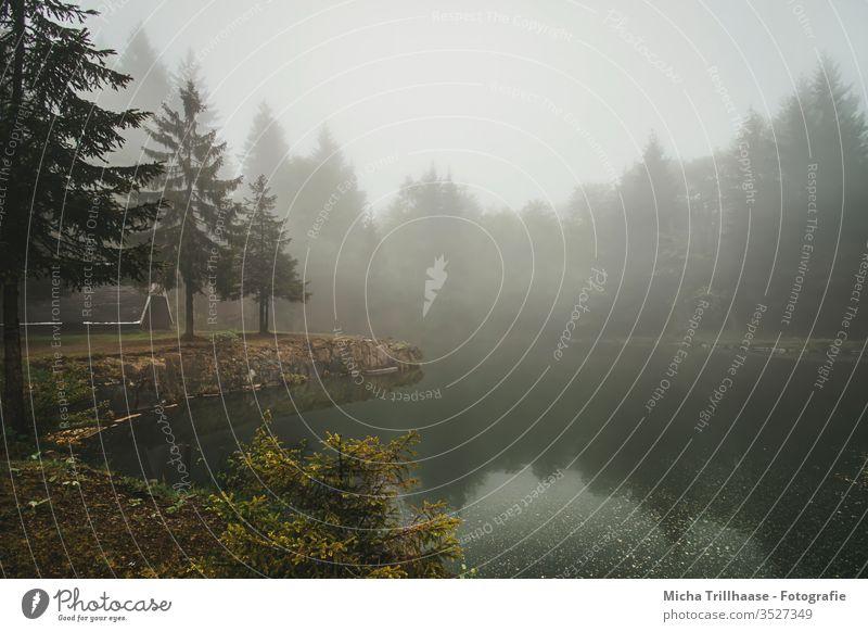 Nebel über dem Bergsee Bergsee an der Ebertswiese Thüringen Thüringer Wald See Wasser Ufer Hütte Nebelschwaden Dunst diesig trüb Bäume Natur Landschaft mystisch