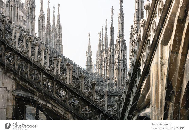 Reihen von gotischen Türmen der Kathedrale von Mailand, Italien Architektur Statue Wahrzeichen Kirche Großstadt Gebäude reisen Dach Duomo Europa Ansicht
