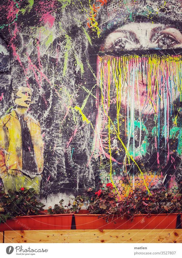 street art Graffiti Blumenkasten Pflenzen bunt holz menschenleer