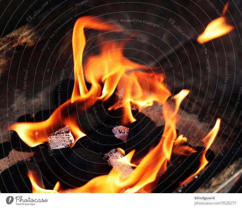We'll burn! Anfeuern zum sommerlichen Grillabend mit Grillanzündern in einfacher Holzkohle. Feuer Flamme heiß grillen. Holzkohle Grillen Kohle