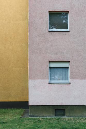 Fassade und zwei Fenster eines Wohnhauses der 60er Jahre, ockergelb und rosa in geometrischer Darstellung Gardine Jalousie Haus Architektur Gebäude Wand Bauwerk