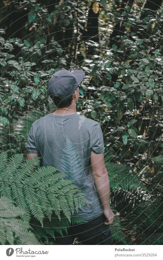 #AS# Farn Entdecker Neuseeland grün Natur Farnzweig farntrieb Farne farnwuchs Farnblätter Farnblatt Farnstengel Neuseeland Landschaft tasten fühlen Pflanze