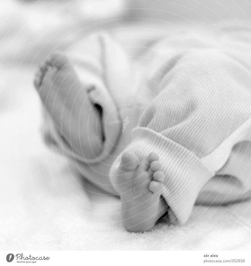 strampeln Mensch Freude Leben Gefühle Glück Fuß Kindheit laufen Baby niedlich Partnerschaft Eltern Frühlingsgefühle Nachkommen Kinderfuß 0-12 Monate