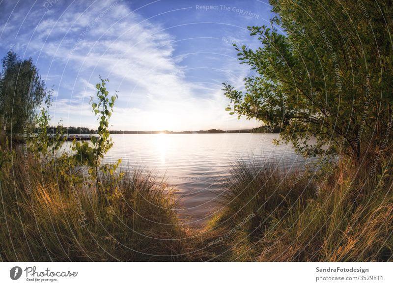 Landschaft am Murner See, Wackersdorf, Bayern Hintergrund schön Schönheit atemberaubend Camping Cloud Wolken wolkig Farbe farbenfroh dramatisch Abend traumhaft