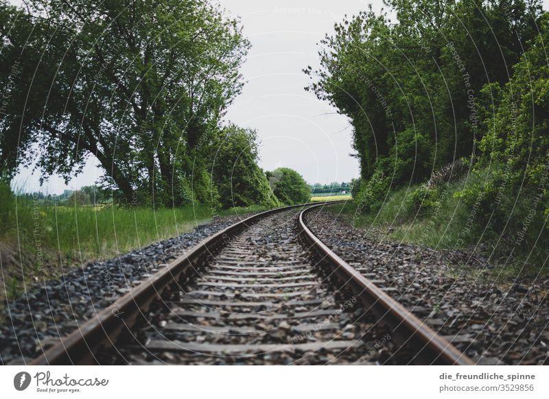 Bahnschienen Schienen Weg Strecke Eisenbahn Verkehr reisen Ausflug Station Linie Transport Reise Bäume Zug Bewegung Landschaft Stahl Ferne Ausflugsziel