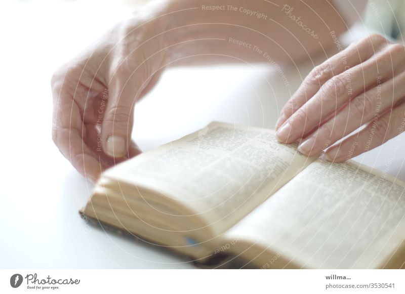 das handbuch zu gott | wörtlich genommen Buch Bibel Hände lesen Heilige Schrift Glaube Religion Christentum Reinheit