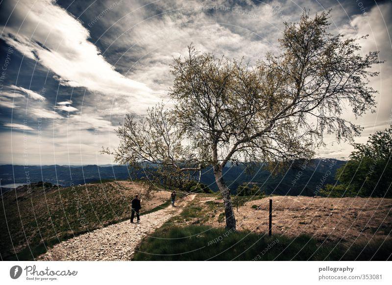find your way Mensch Himmel Natur Mann Jugendliche Sommer Pflanze Baum Landschaft Wolken Wald Erwachsene Umwelt Junger Mann Berge u. Gebirge Wiese