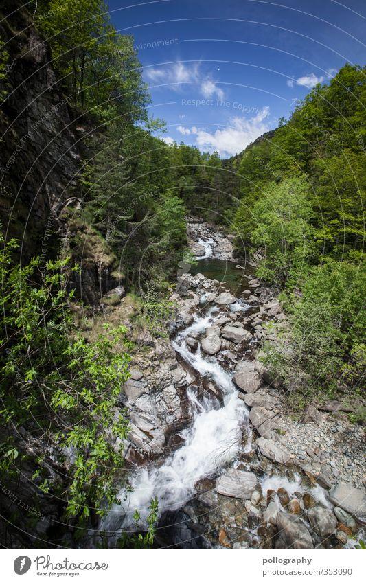 diverse nature 3 Umwelt Natur Landschaft Pflanze Wasser Himmel Wolken Sommer Klima Schönes Wetter Baum Blume Sträucher Wald Felsen Flussufer Bach Einsamkeit