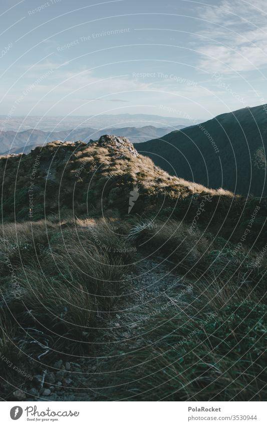 #AS# Hoher Pfad Pfadfinder Pfade Berge u. Gebirge Gras grasgrün Neuseeland hoch Gipfel Wanderung Outdoor Outdoor-Erholung Outdoor-Fotografie Natur Landschaft