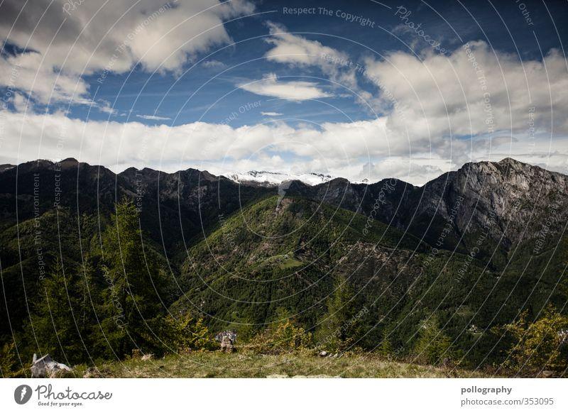 diverse nature 2 Himmel Natur Sommer Pflanze Baum Einsamkeit Landschaft Blume Erholung Wolken Wald Umwelt Wiese Berge u. Gebirge Gras Freiheit