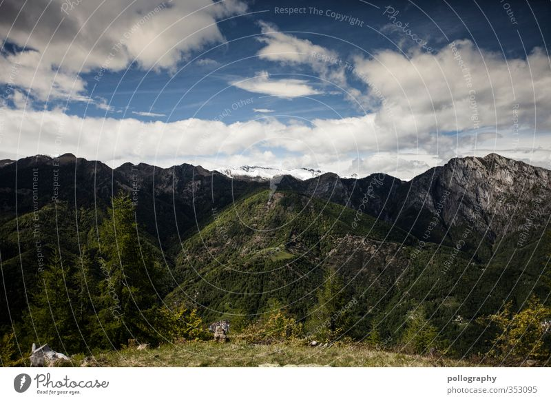 diverse nature 2 Umwelt Natur Landschaft Pflanze Luft Himmel Wolken Sommer Wetter Schönes Wetter Baum Blume Gras Wiese Wald Hügel Felsen Alpen Berge u. Gebirge