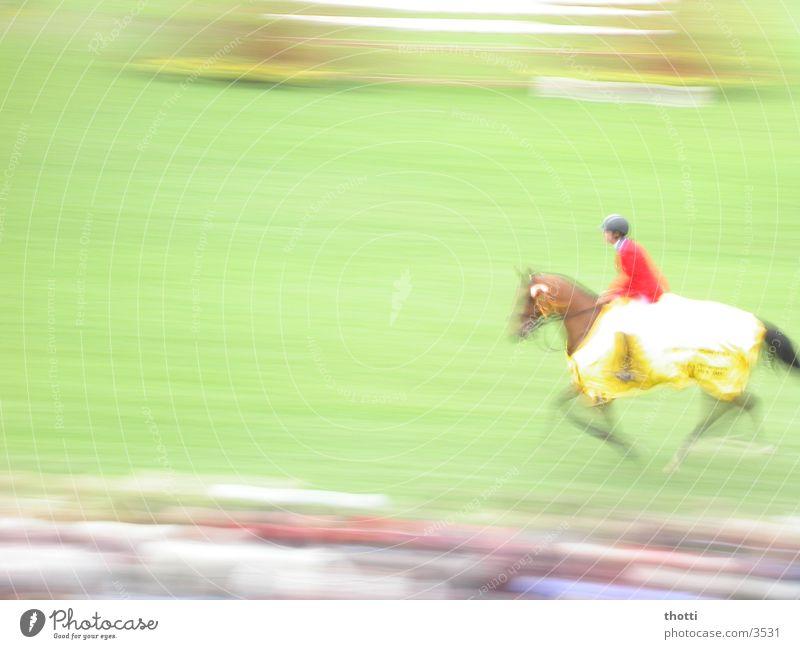 1 PS Sport Bewegung Geschwindigkeit Pferd Reitsport Aachen Springreiten