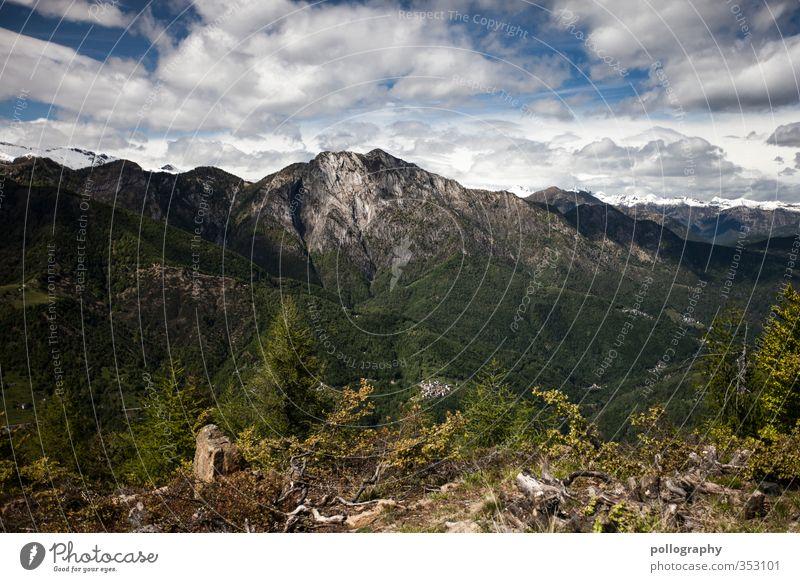 diverse nature Umwelt Natur Landschaft Pflanze Erde Luft Himmel Wolken Sommer Klima Schönes Wetter Baum Gras Grünpflanze Wald Hügel Felsen Alpen