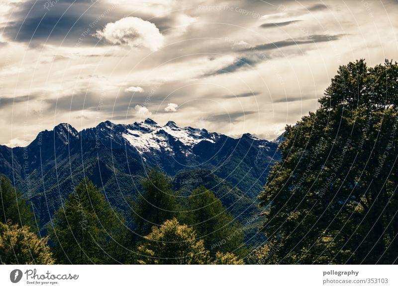 diverse nature 8 Umwelt Natur Landschaft Pflanze Himmel Wolken Sommer schlechtes Wetter Baum Wald Hügel Felsen Alpen Berge u. Gebirge Gipfel