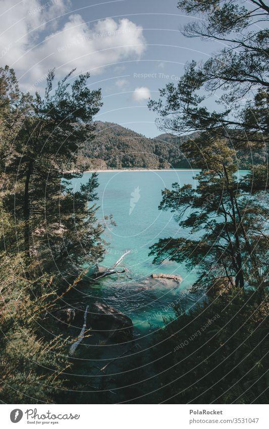 #AS# Küstenwanderung Neuseeland Neuseeland Landschaft Abel Tasman National Park Abel Tasman Park abel tasman Südinsel Strand Küstenstreifen küstenschutz