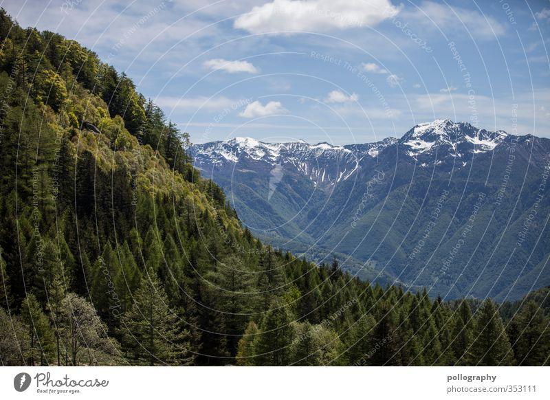 mother nature 3 Umwelt Natur Landschaft Pflanze Himmel Wolken Sommer Schönes Wetter Baum Baumkrone Wald Hügel Felsen Alpen Berge u. Gebirge Gipfel