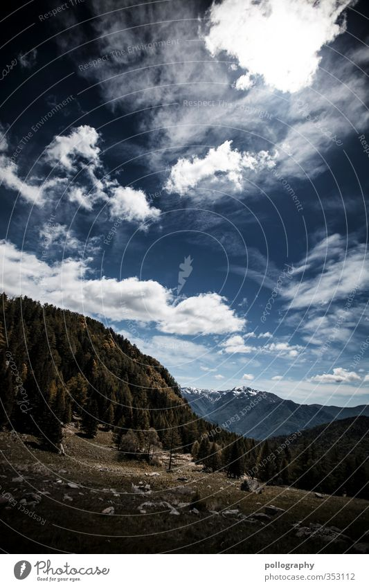 mother nature 2 Umwelt Natur Landschaft Pflanze Himmel Wolken Sonne Sonnenlicht Sommer Klima Schönes Wetter Baum Gras Sträucher Wiese Wald Hügel Felsen Alpen