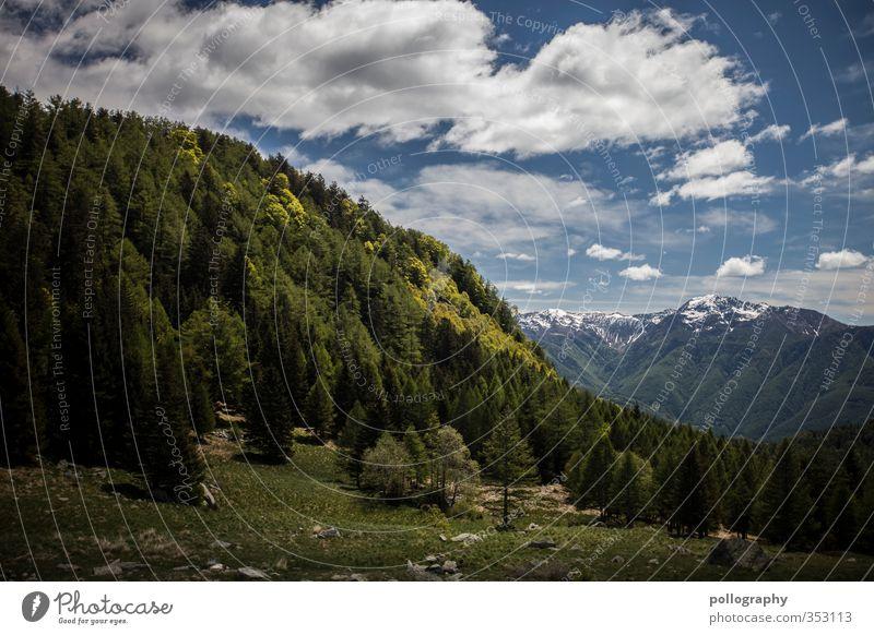 mother nature Umwelt Natur Landschaft Pflanze Himmel Wolken Sonnenlicht Sommer Wetter Schönes Wetter Baum Wiese Wald Hügel Felsen Alpen Berge u. Gebirge Gipfel