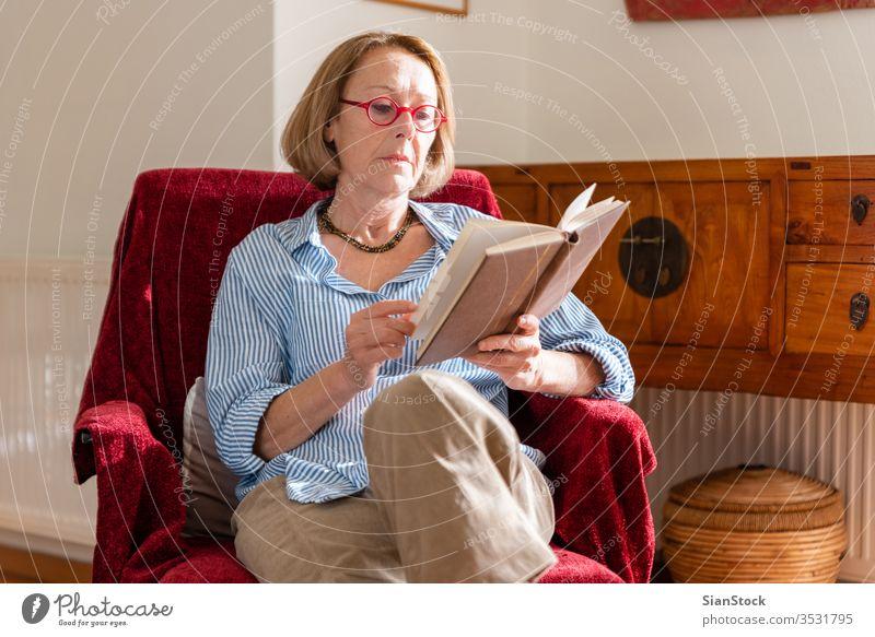 Elegante reife Frau liest zu Hause ein Buch Lesebuch ältere Frau Entspannung zu Hause Wissen modern Wohlbefinden Mitte Beteiligung Blick Armsessel Sitzen
