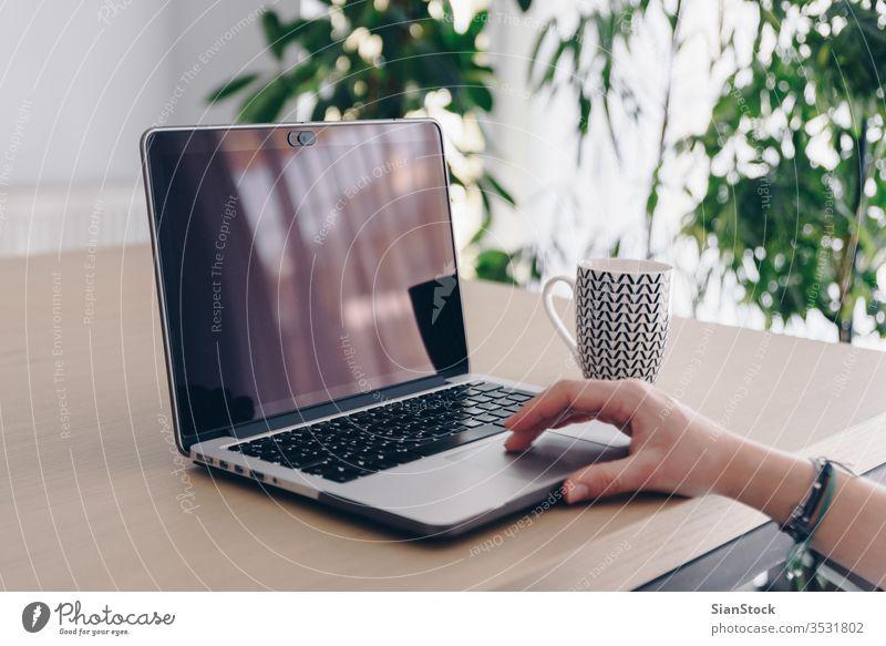 Frauenhände, Arbeit von zu Hause aus heimwärts arbeiten Computer Laptop Büro Schreibtisch benutzend jung Business Internet Kaffee Becher Tasse