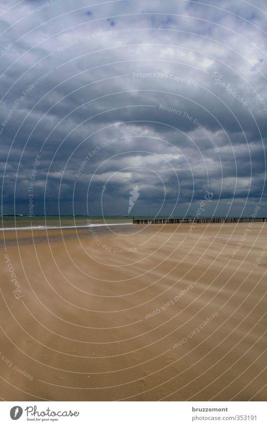 Vlissingen Natur Sand Gewitterwolken Wetter schlechtes Wetter Wind Sturm Wellen Küste Strand Meer Kraft Abenteuer Sandsturm dramatisch Buhne Nordsee Niederlande