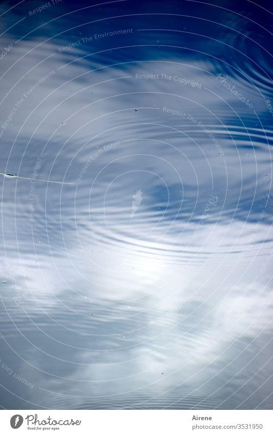 Regen bringt Segen Wasser Himmel Reflexion & Spiegelung See Teich Vogelperspektive Wetter Klima Regentropfen Tropfen Kreise blau weiß Wolken blauer Himmel