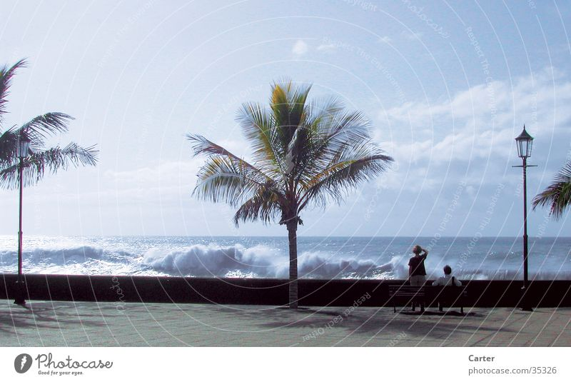 Brandung Mensch Himmel Meer Sommer Strand Ferne Paar Wellen Bank Palme