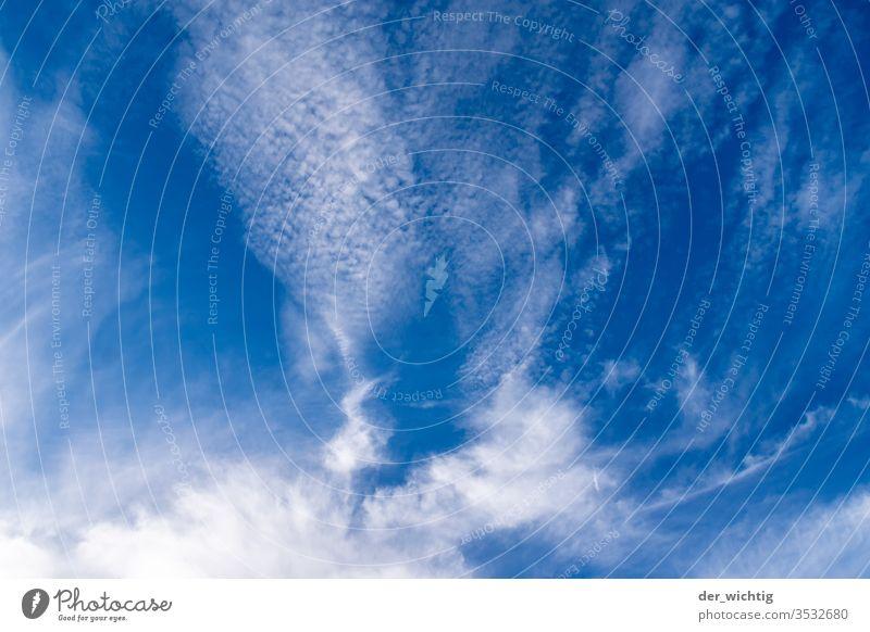 Himmel und Wolken schönes Wetter Froschperspektive Menschenleer Umwelt Tag Natur Farbfoto Unendlichkeit Wolkenformation Wolkenberg Wolkenhimmel
