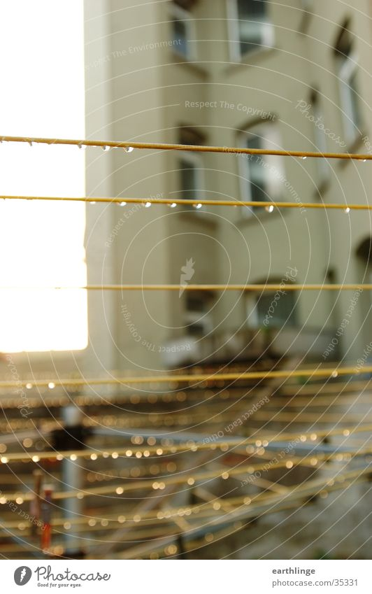 Goldleine Wäscheständer Regen Hinterhof gelb feucht Nahaufnahme Häusliches Leben Garten Seil trist Tiefenunschärfe Menschenleer