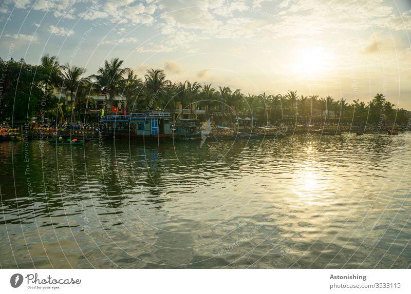 Abend in Hoi An am Thu Bon Fluss Vietnam Asien Sonne Palmen Spiegelung Natur Wasser Außenaufnahme Ferien & Urlaub & Reisen Reflexion & Spiegelung Landschaft