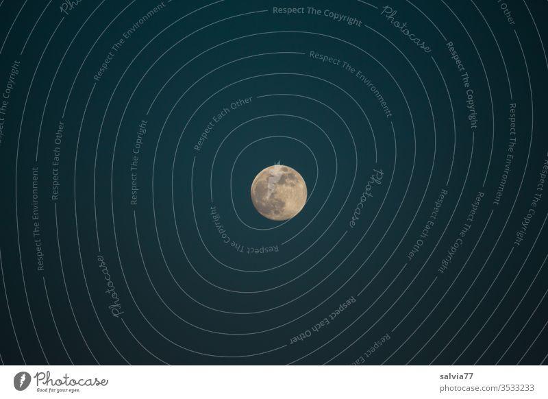 Vollmond Mond Nachthimmel Natur Himmel dunkel Mondschein Menschenleer Kontrast Mittelpunkt