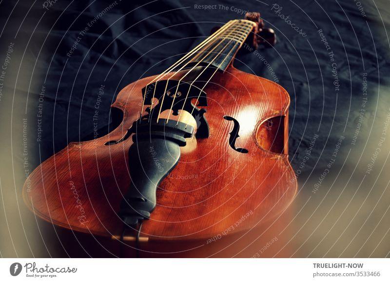 Eine Gambe oder viola da gamba mit sechs Saiten aus der Meisterwerkstatt des Geigenbauers Tilmann Muthesius liegt hier flach auf einem schwarzen Tuch von Tageslicht beleuchtet