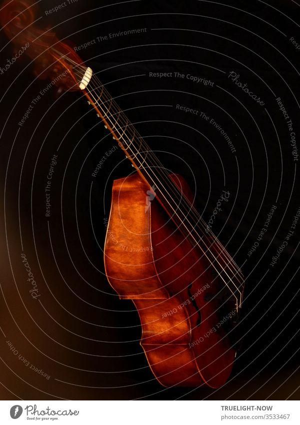 Viola da Gamba, auch Gambe, in der Meisterwerkstatt von T. Muthesius Streichinstrument Saiteninstrument Teilansicht Steg Resonanzkörper Holz low key dunkel